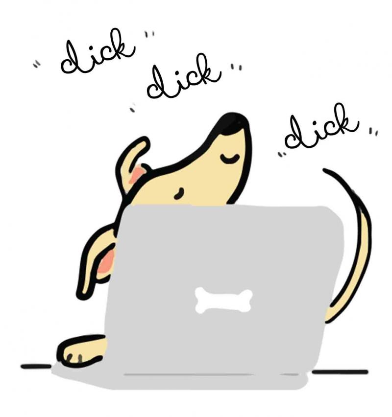 galgo greyhound
