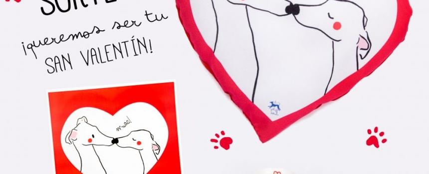 Llena tu hogar de galgos y… ¡sorteo de San Valentín!